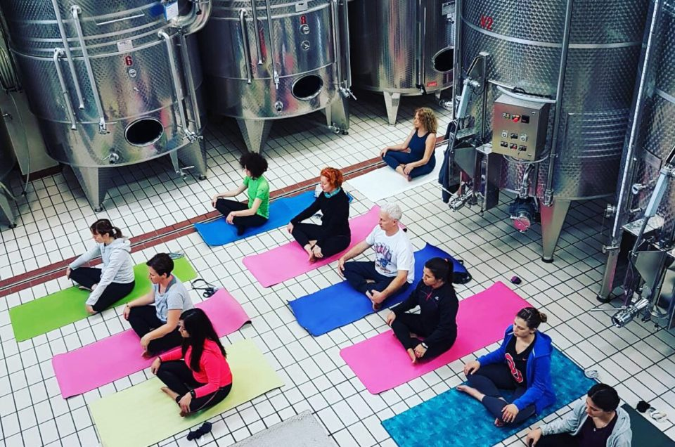 Trekking&yoga Tra I Vigneti Della Spergola – 26 Maggio