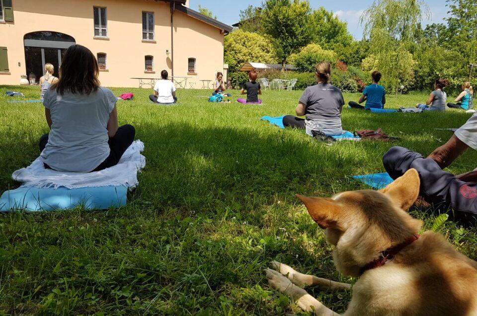 Trekking & Yoga domenica 23 maggio al Parco Acquechiare